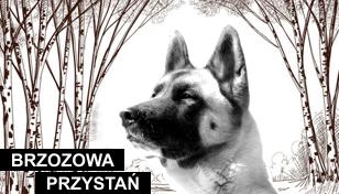 Brzozowa Przystań – Cmentarz dla zwierząt