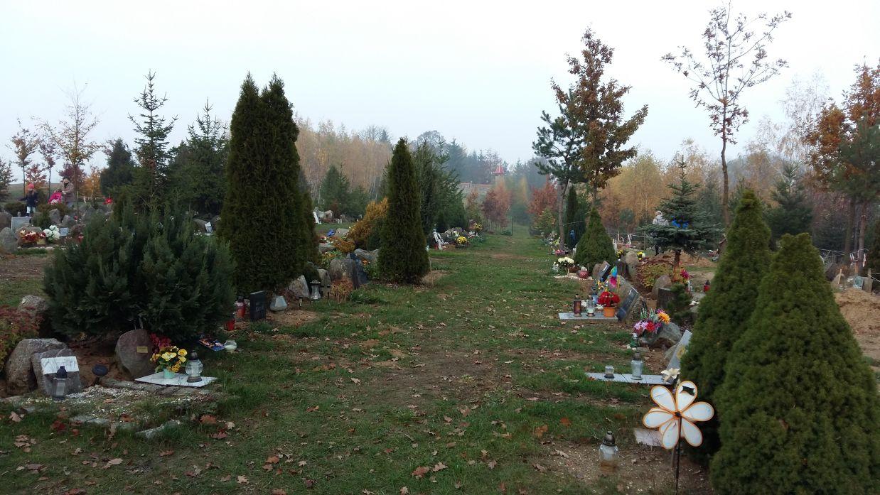 Brzozowa Przystań - cmentarz dla zwierząt.